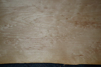Yellow Birch Raw Wood Veneer Sheets 9 x 99 inches. 1/32nd thick    ST6775-19