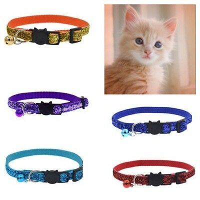 Brillant Chat Chaton Collier avec Bell Protection Boucle Réglable