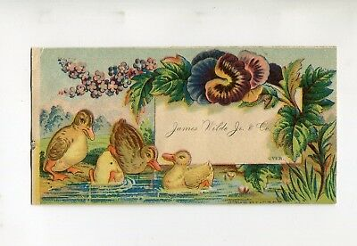 Victorian Trade Card JAMES WILDE OVERCOATS & ULSTERETTES Chicago ducks pansy