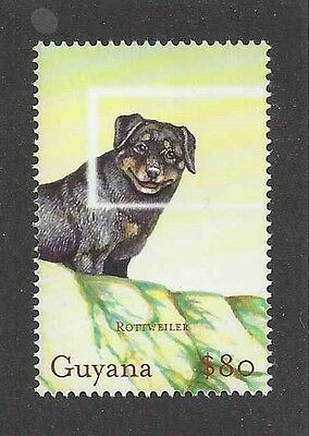 Art Full Body Study Portrait Postage Stamp ROTTWEILER DOG Guyana MNH