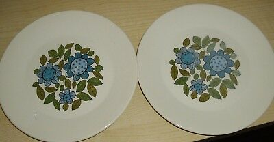 J&g Meakin ~ Studio Topic ~ 2 Desert Plates With Retro Blue Flowers