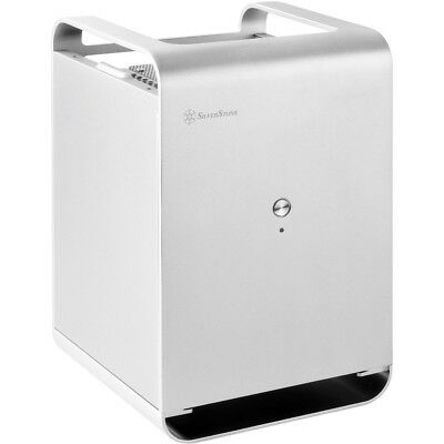 Silver Stone Technologies Case Storage Small Form Factor NAS Chassis, Silver
