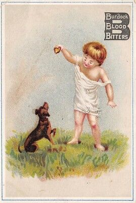 Wolfeboro New Hampshire Victorian Trade Card Burdock Blood Bitters Quack Meds