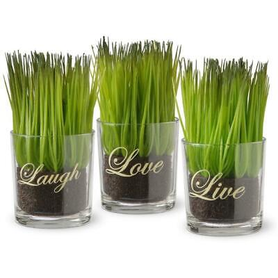 National Tree Assortment-Small Glass Cup Printed Live Laugh & Love - Set of 3