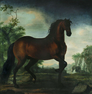 """stunning art oil painting 100% handpainted on canvas """"a horse"""""""