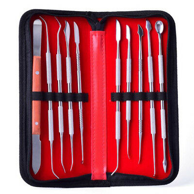 10pcs Dental Stainless Steel Wax Carving Tool Carver Cutter Mixing Instrument Z