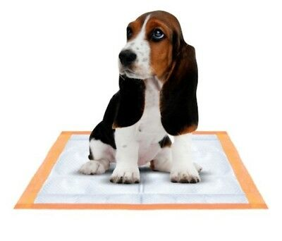 """Mednet Direct Ultra Absorbent Pet Training and Puppy Pads 100ct, 30"""" x 36"""", XXL"""