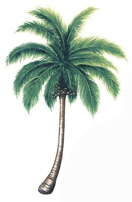 "Palm Tree 4 pcs 6"" X 3-3/4"" Waterslide Ceramic Decals Xx"