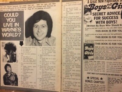 Wayne Osmond, Osmonds Brothers, Two Page Vintage Clipping