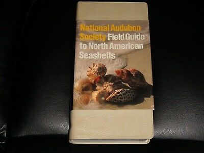 National Audubon Society Field Guide To North American Seashells !