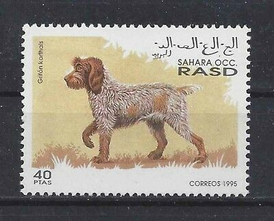 Dog Art Postage Stamp GERMAN WIREHAIRED POINTER POINTING GRIFFON Sahara 1995 MNH