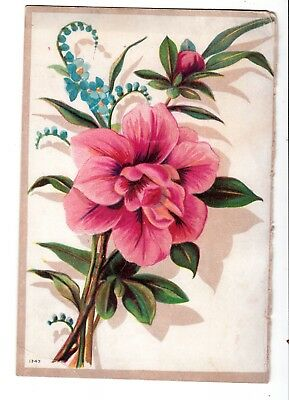 Great Atlantic Pacific Tea Co Akron Ohio Pink Flower Vict Card c1880s