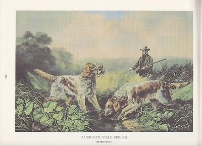 """1974 Vintage Currier & Ives HUNTING """"RETRIEVING"""" HOUNDS DOGS COLOR Lithograph"""