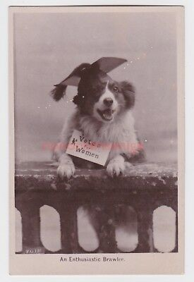 """Suffragette """"votes For Women"""" Dog An Enthusiastic Brawler F. G. Rp Pc E20C - 22"""