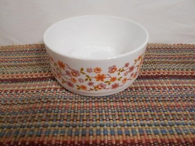 1970s Vintage Arcopal France Scania Fruit Serving /Oven Bowl Excellent Condition