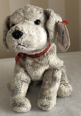 TY ~ Tricks the Dog Beanie Baby 1999 ~ MINT with MINT TAG Retired