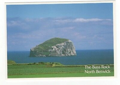 The Bass Rock North Berwick East Lothian Postcard 920b