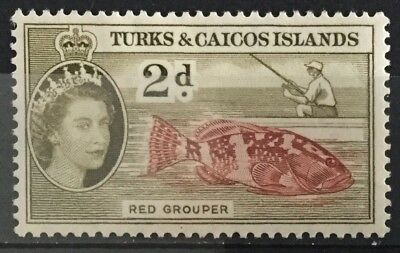 Turks and Caicos Islands 1957  2d. Red Grouper  SG239 Mtd.Mint