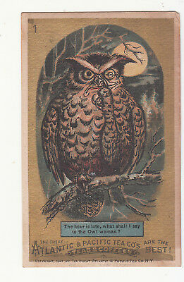 Great Atlantic Pacific Tea Owl THE HOURS IS LATE Vict Card c1880s