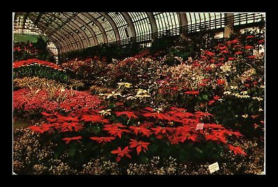 Dr Jim Stamps Us Christmas Flower Show Garfield Park Chicago Postcard