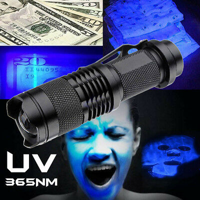 High Powered UV Lamp Black Light Ultra Violet Flashlight 395nm 5W LED Flashlight