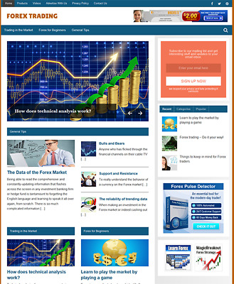 FOREX TRADING GUIDE- Fully Featured Niche Website For Sale - Newbie Friendly