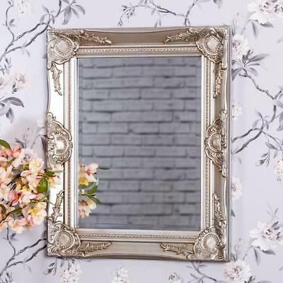 Champagne Ornate Wall Mirror French Chic Rococo Style Baroque Hallway Bedroom