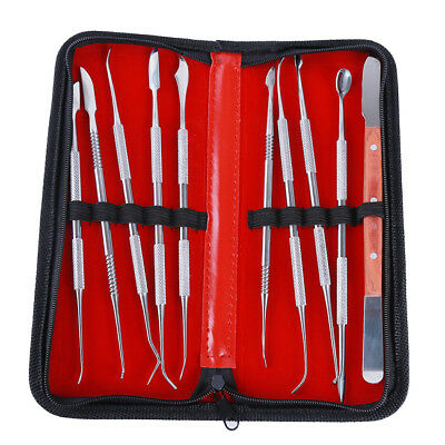 10Pcs Stainless Steel Dental Lab Kit Case Wax Modelling Carving Tackle Tool HZ