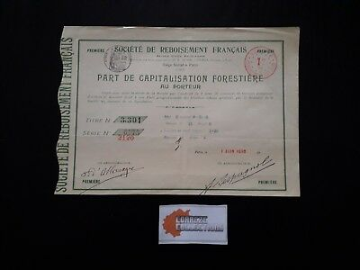 Action Societe De Reboisement Francais Part Capitalisation Forestiere 1910 - P05