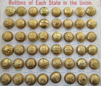 Carded Lot of Antique~ Vtg Metal Military/ Uniform BUTTONS States of Union (M2)
