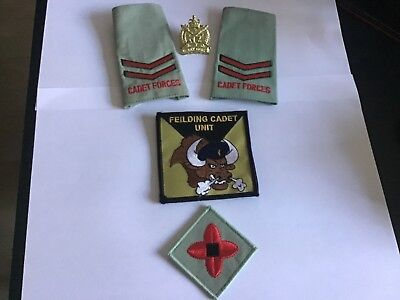NEW ZEALAND ARMY UNFORM RANK SLIDES AND CAP BADGE also unit arm Badge