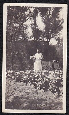 Vintage Antique Photograph Woman in Apron Holding Chicken in the Garden