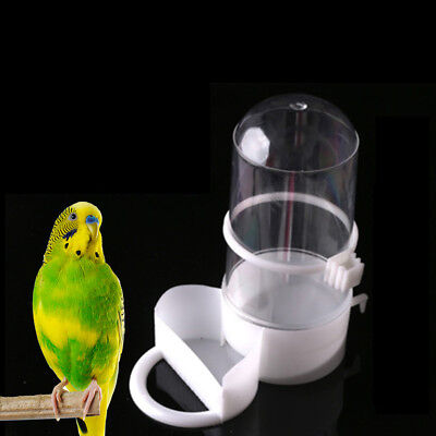 bird pet drinker feeder automatic food waterer clip aviary cage parrot budgie DS
