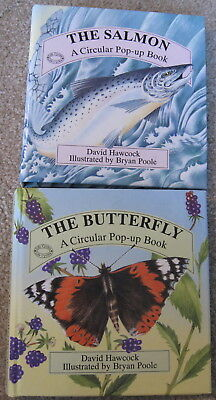 2 Circular POP-UP Books Kids Butterfly Salmon Hyperion David Hawcock; Poole