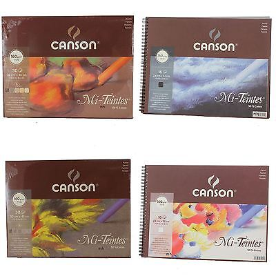 Canson Mi-Teintes Artists Pastel Paper 160gsm Pads Grey Eart White Black Tone