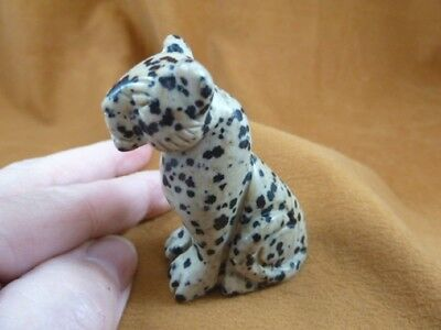 Y-CHE-707) White black spotted CHEETAH gemstone GEM carving wild CATS cat statue
