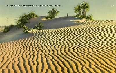 """""""a Typical Desert Washboard In The Ole Southwest"""" Linen Postcard 1943 Cancel"""