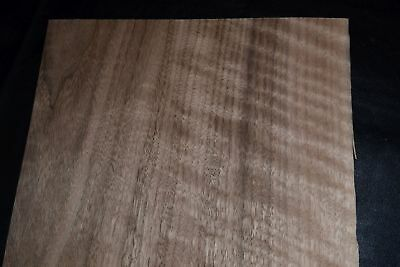 Walnut Raw Wood Veneer Sheets 9 x 42 inches 1/42nd                      E6925-17