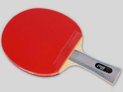 Pro DHS double happiness 6002 table tennis rackets Shake-hands grip long handle