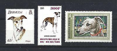 Dog Art Head & Full Body Study Portrait Postage Stamp Collection WHIPPET 3 x MNH