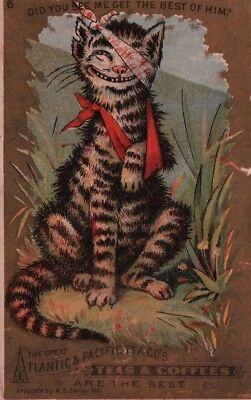 1881 Seeley Atlantic & Pacific Tea CAT Best of Him Victorian Trade Card