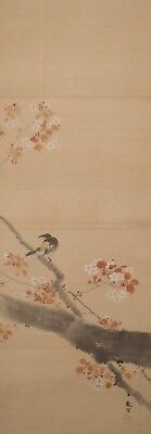 #1076 Japanese Hanging Scroll: Bird on Cherry Tree