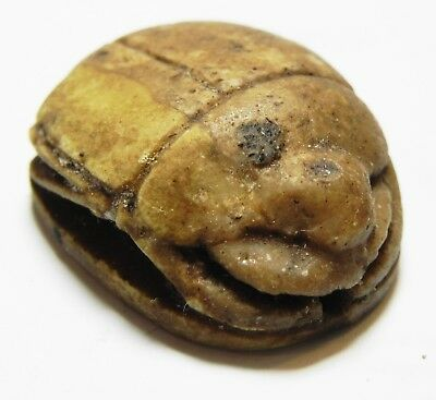 Zurqieh -As10261- Ancient Egypt,  Stone Scarab. New Kingdom. 1300 B.c
