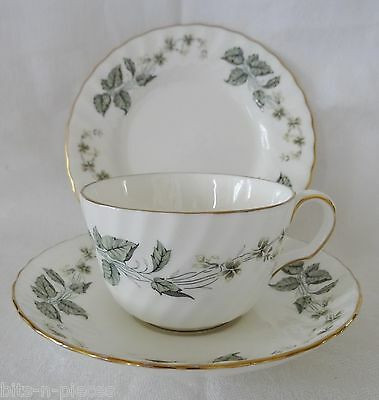 MINTON GREENWICH  Cup Saucer Tea Plate TRIO  White with green  leaves gold rims