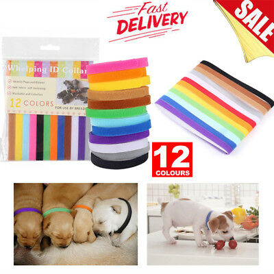12/24x Color Whelping ID Collar Bands Tags Pet Puppy Dog Kitten Identification