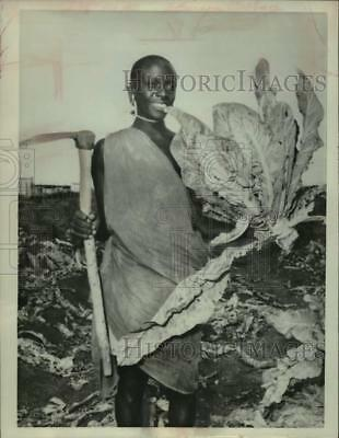 1961 Press Photo A warrior of the Masai Tribe in Kenya, Africa, turned farmer
