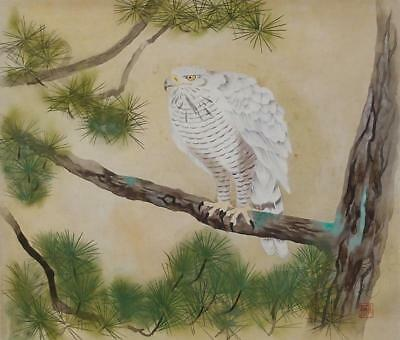 #1111 Japanese Hanging Scroll: White Hawk on Pine Tree