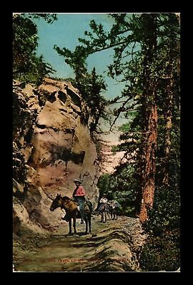 Dr Jim Stamps Us Trail To Mount Wilson California View Postcard
