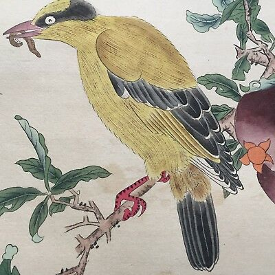 Antique Chinese Rare Paper Collectible Handwork Paint Birds Eat Worm Painting