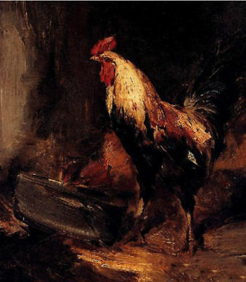 LMOP770 modern animal rooster feeding cock hand art oil painting on canvas